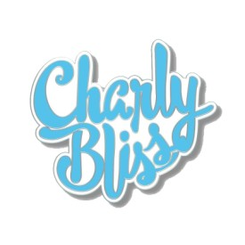 "cbpin01: Charly Bliss / 1.5"" Logo"