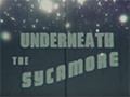 Underneath The Sycamore (from Codes And Keys)